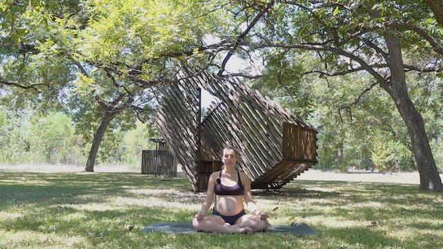 Visualize your Dream Birth Meditation