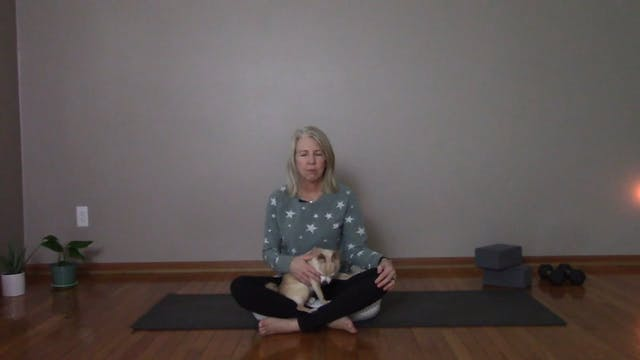 Meditation Sampler