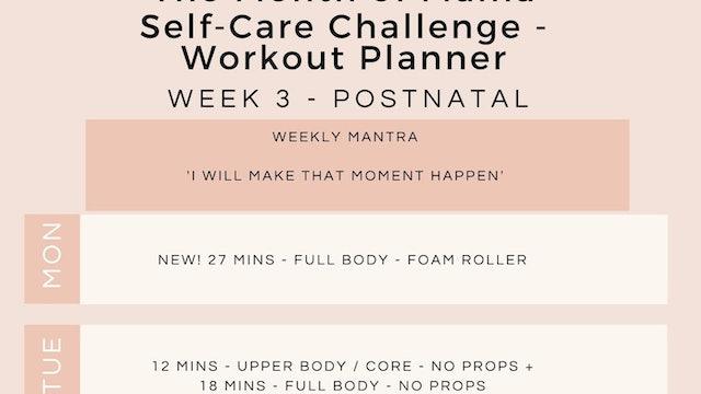 Week 3 Workout Planner - Postnatal.jpg