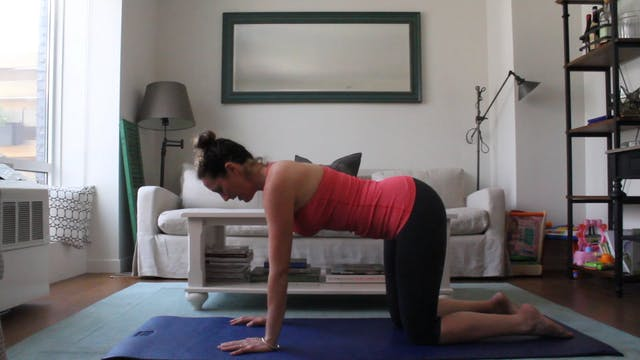 11 Mins - Week 3-4 - Core - (Postnatal)
