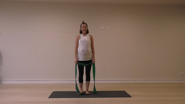 41 Mins - Full Body - Theraband (Prenatal)