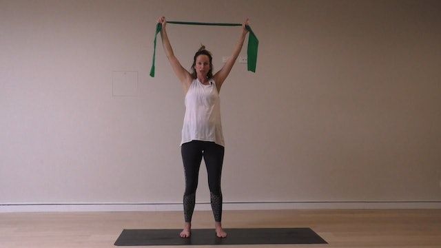 12 Mins - Arms & Back - Theraband (Prenatal)