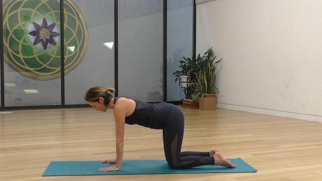 15 Mins - Core - No Props (Prenatal)