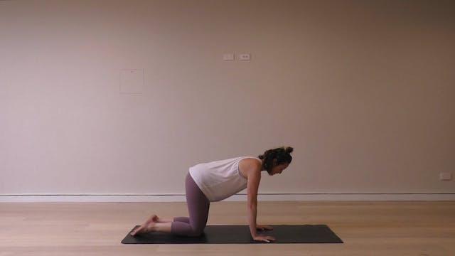 15 Mins - Back (Prenatal)