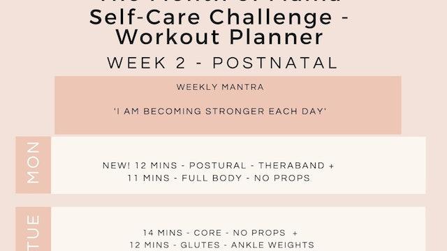 Week 2 Workout Planner - Postnatal.jpg