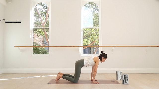 20 mins - Yoga Flow - Yoga Brick (Prenatal)