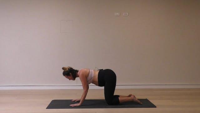 20 Mins - Core - No Props (Prenatal)