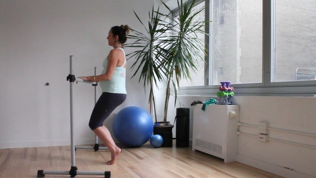 11 Mins - Full Body - Barre & Light Hand Weights - (Prenatal)