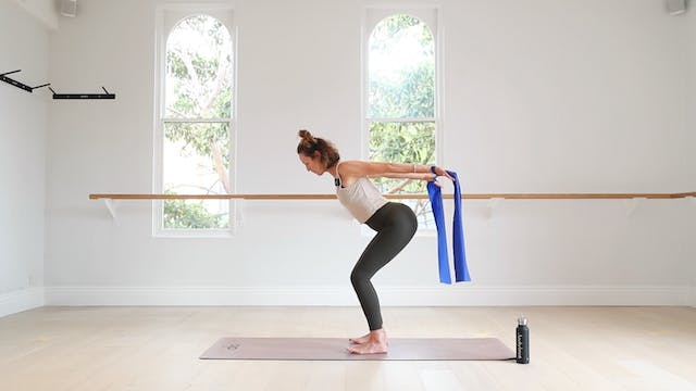 12 Mins - Arms & Back - Theraband (Pr...