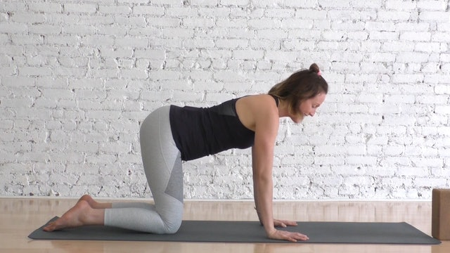 14 Mins - Week 9 - Core - Small Ball & Block (Prenatal)