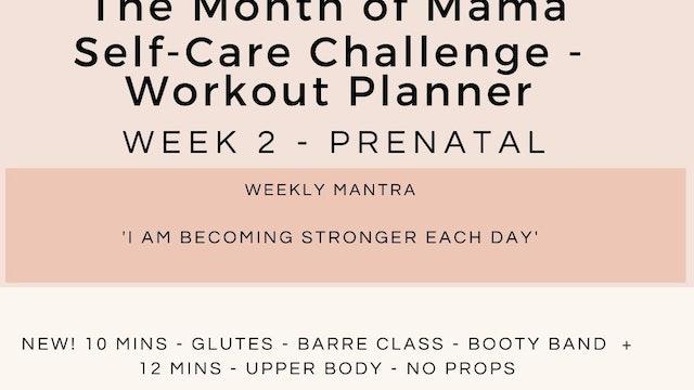 Week 2 Workout Planner - Prenatal.jpg