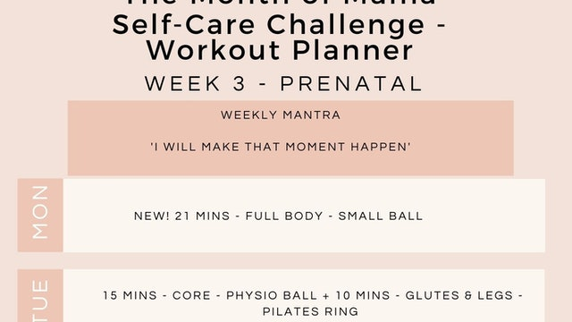Week 3 Workout Planner - Prenatal.jpg