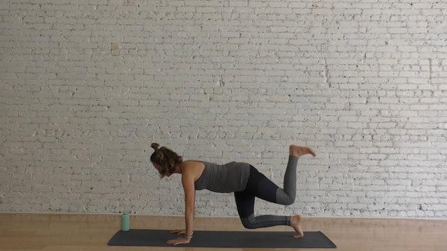42 Mins - Week 12 - Full Body - No Props (Prenatal)