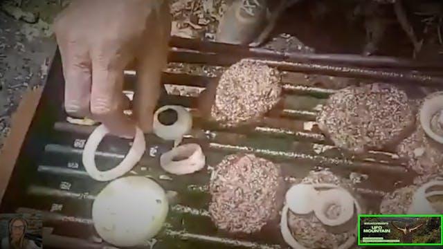 Cheeseburger! Cheeseburger!