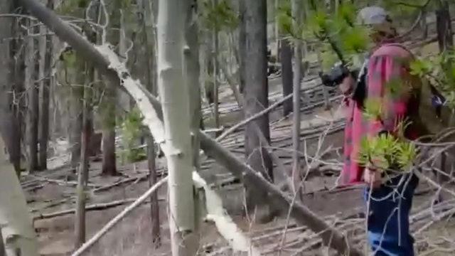 Blair Squatch Project! (Sasquatch Journey)