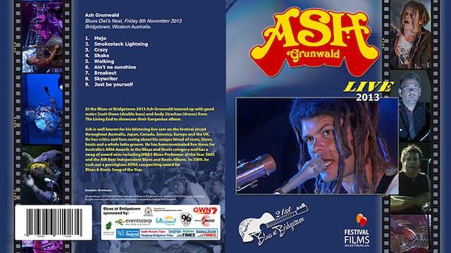 Ash Grunwald - 2013