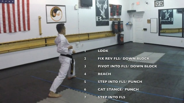 8-White Belt Form