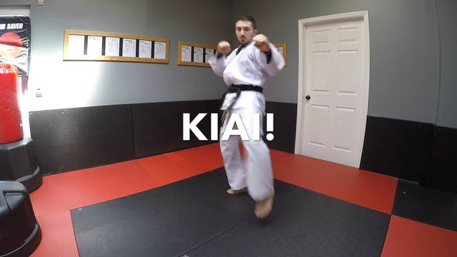 12-Blue Belt Kicks