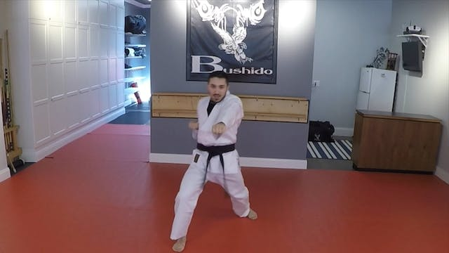Blue Belt Form