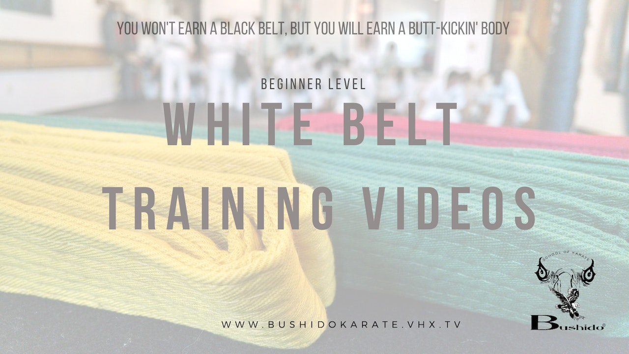 Beginner Level: White Belt, 1st level