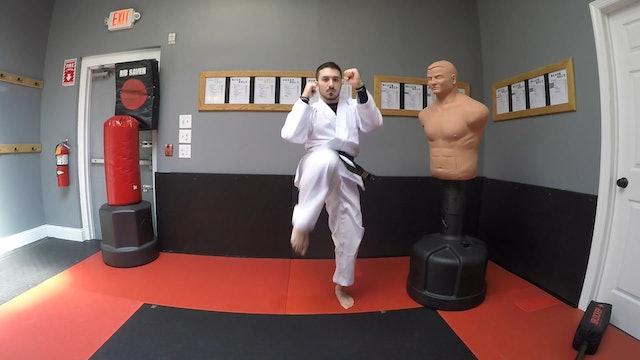 4-White Belt Kicks