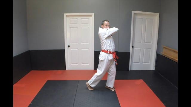 19-Yellow Belt Strikes