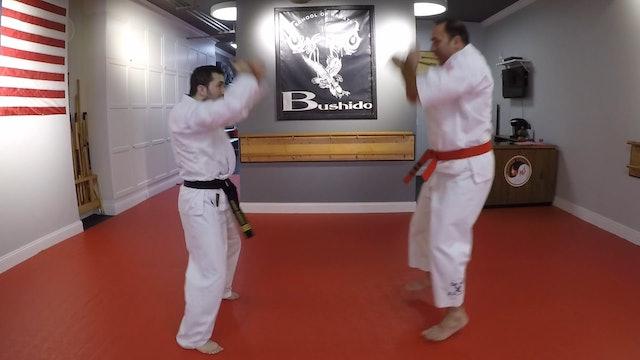 6-Self-defense Move #2