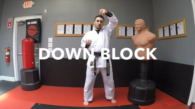 2-White Belt Blocks