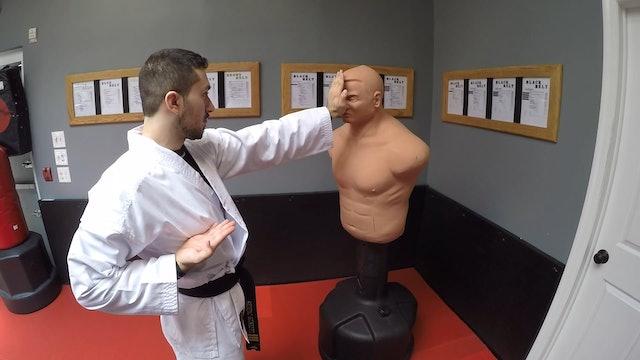 3- White Belt Strikes