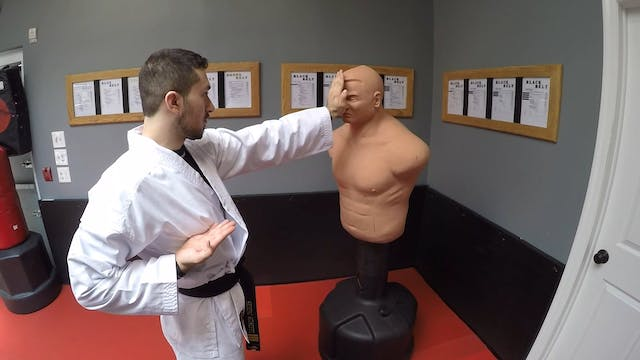 3- White Belt Strikes