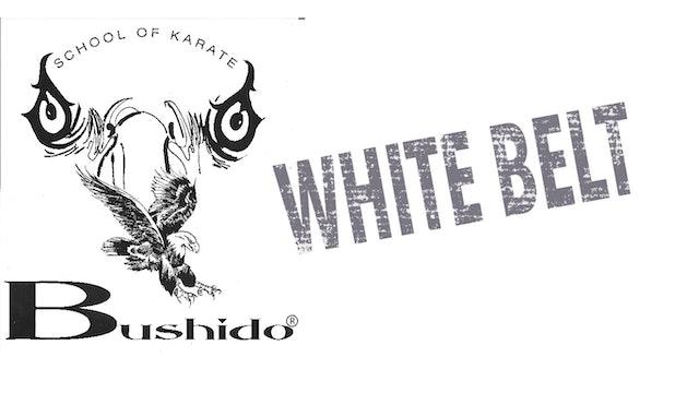 White Belt/Orange Belt Requirements