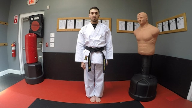 1-White Belt Basic Stances