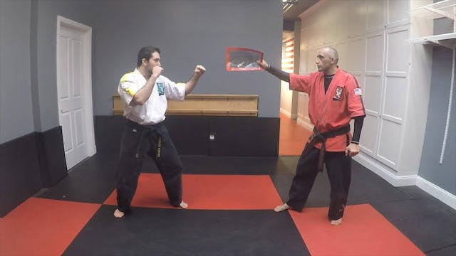 33-Red Belt Kicks