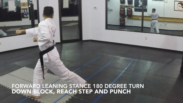 9-Drills for White Belt Form
