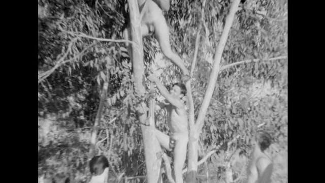 Homeland Nudists #2