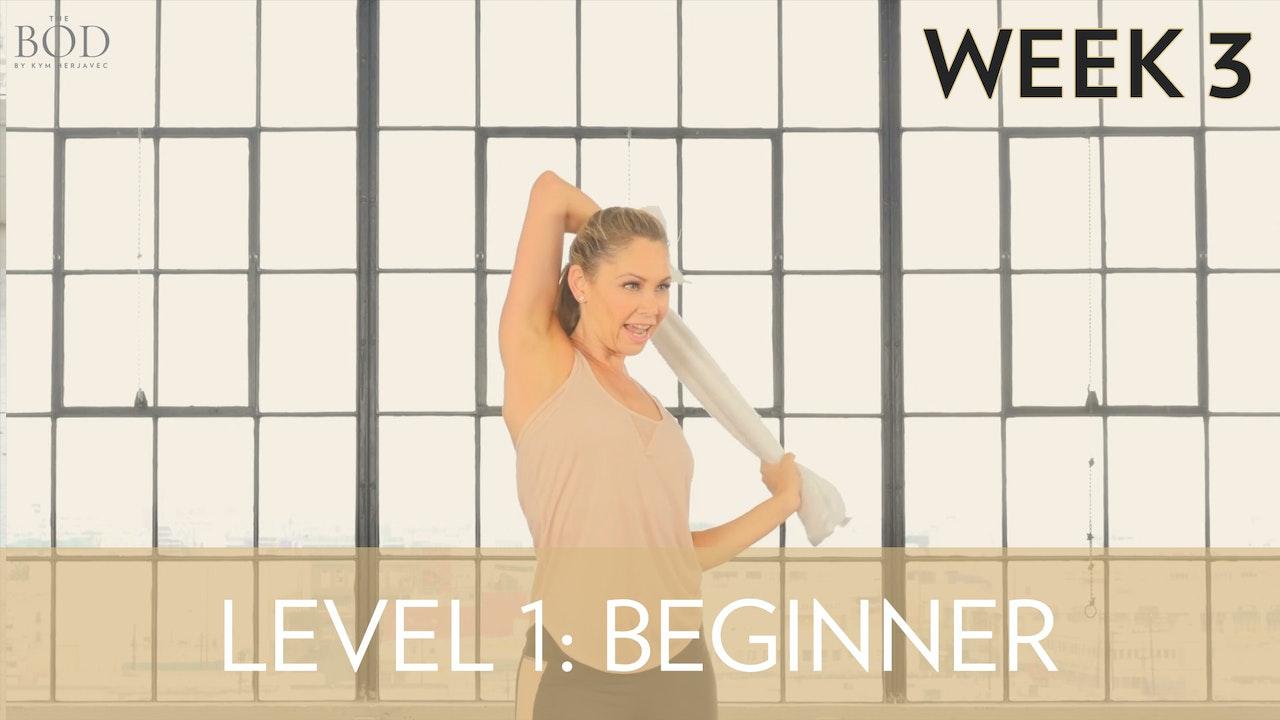 Beginner - Week 3