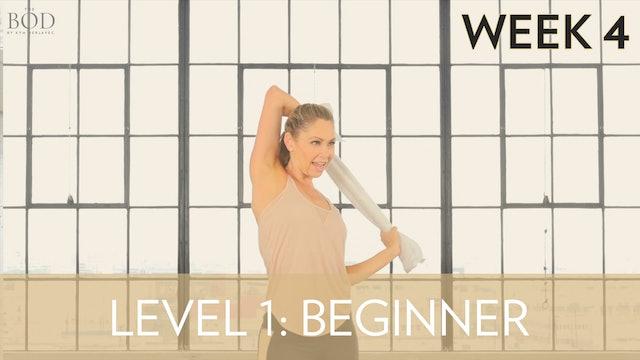 Beginner - Week 4