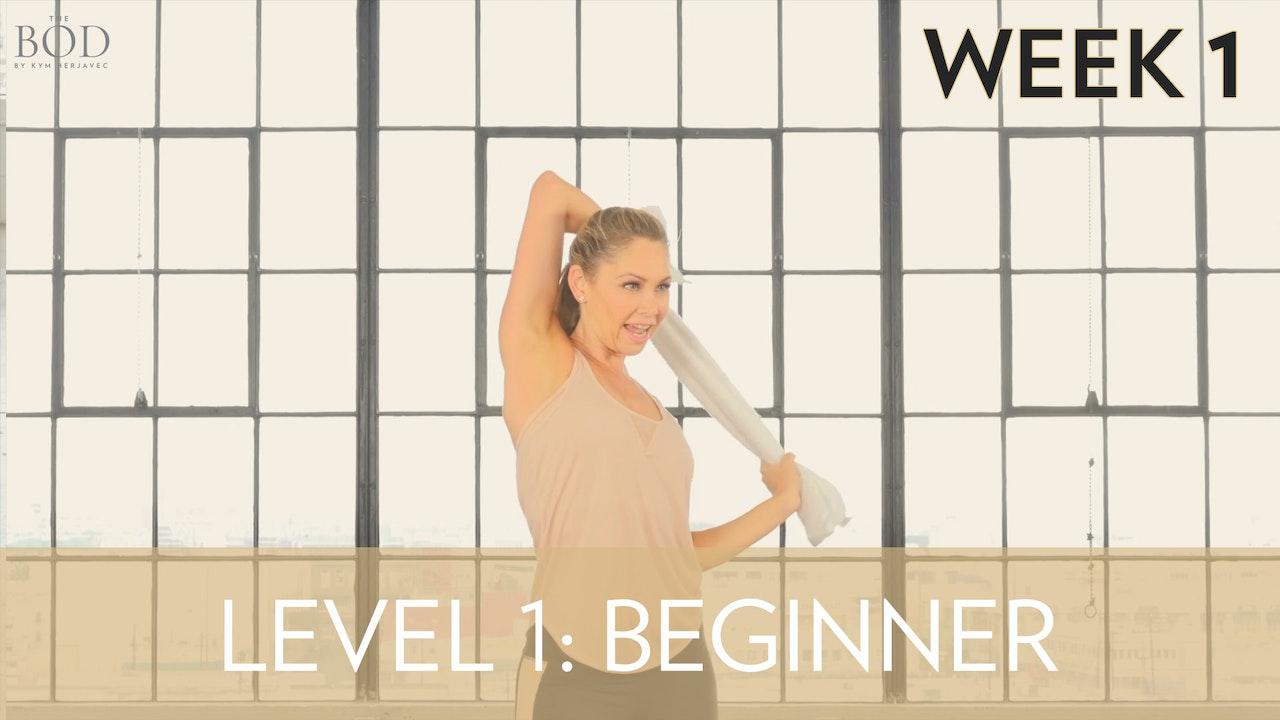 Beginner - Week 1