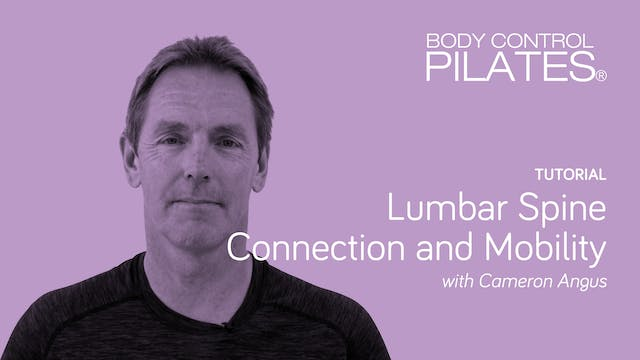 Tutorial: Lumbar Spine Connection and...