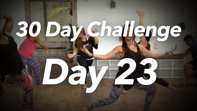 30 Day Challenge - Day 23 Workout