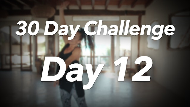 30 Day Challenge - Day 12