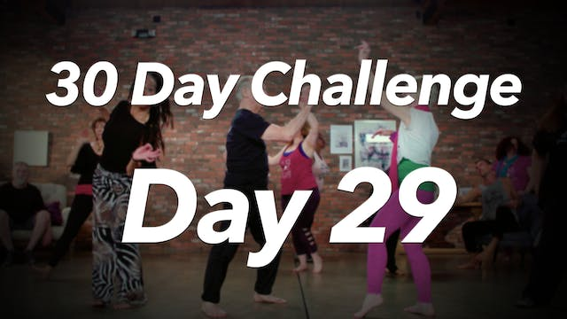 30 Day Challenge - Day 29 Workout