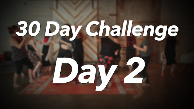 30 Day Challenge - Day 2 Workout