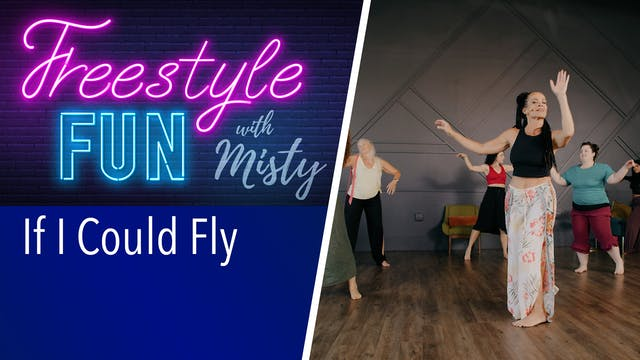 Freestyle Fun - If I Could Fly