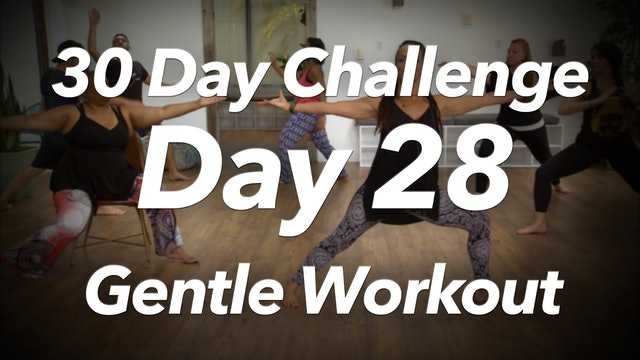 30 Day Challenge - Day 28 Gentle Workout