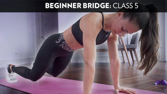 Beginner Bridge: Class 5