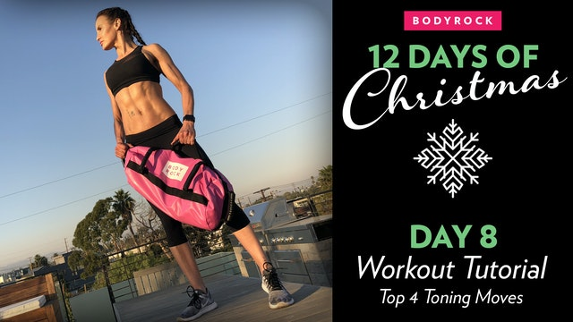 Day 8 Tutorial: Top 4 Toning Sandbag ...