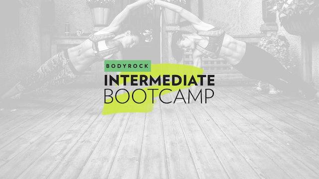 Intermediate Bootcamp - 30 Day Challenge