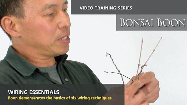 Wiring Essentials