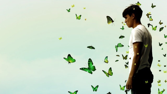 Mariposas Verdes  - Póster